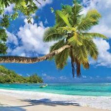 Фототапет палма на райски плаж - 10332